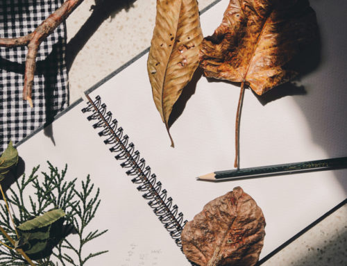 Get started in your journal – it's early autumn, a season for creativity!