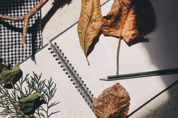 Autumn The Season for Creativity - Journal Writing